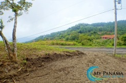 Econo-Miser: 2 Lots For Sale Below Developer Pricing in Altos del Maria