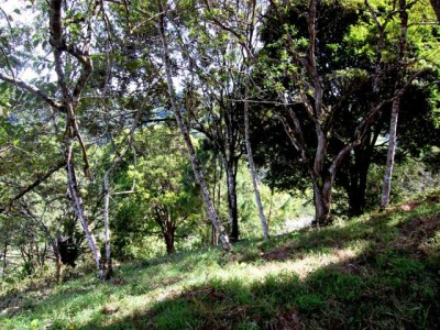 For-Sale-Altos-Lot-Slope