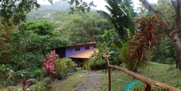 For-Sale-Altos-Stairway