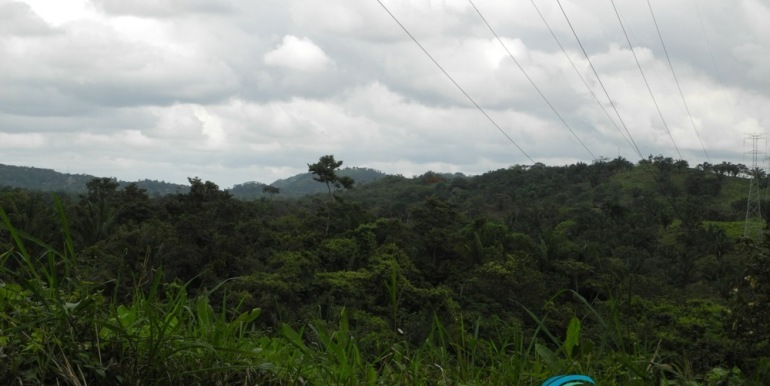 For-Sale-Capira-View of Chorrera from LaLoma