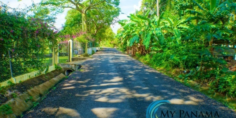 ForSale-TheCatDenTeam-MPRE-Cabuya-house-driveway