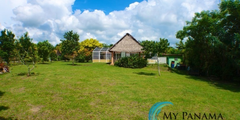 ForSale-TheCatDenTeam-MPRE-Cabuya-house-large-yard