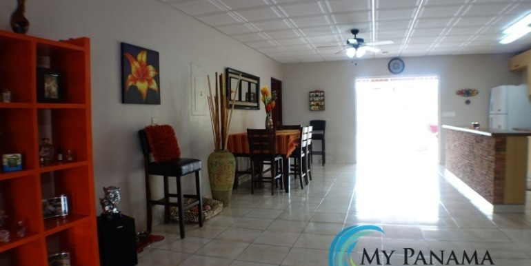 ForSale-TheCatDenTeam-MPRE-Cabuya-house-main-area