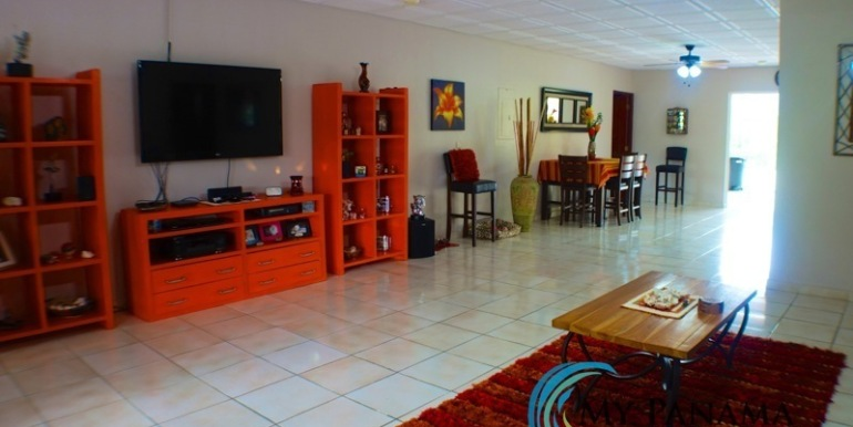 ForSale-TheCatDenTeam-MPRE-Cabuya-house-main-living-area