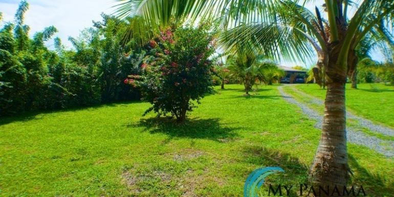 ForSale-TheCatDenTeam-MPRE-Cabuya-house-more-fruit-trees