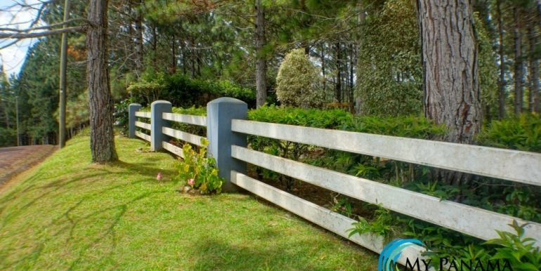 fence and side yard