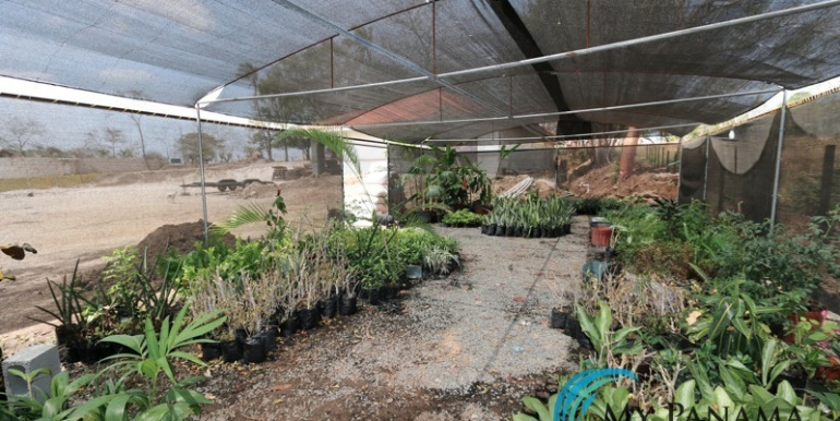 Home-For-Sale-Panama-Azura-Greenhouse