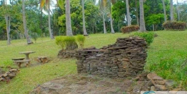 Panama-Buenos Aires-Finca-for-sale4