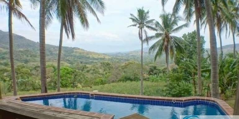 Panama-Buenos Aires-Finca-for-sale5