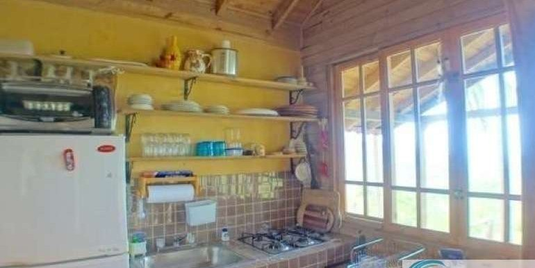 Panama-Buenos Aires-Finca-for-sale6