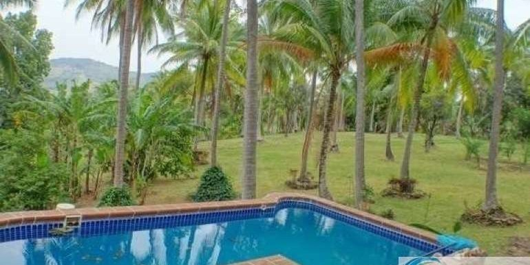 Panama-Buenos Aires-Finca-for-sale9