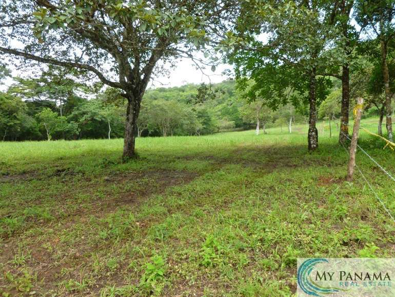 Ready to Own Land in Panama? Build Your Dream Home!