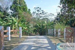 5,500 Square Meters of Panama Real Estate to Build Your Tropical Home!