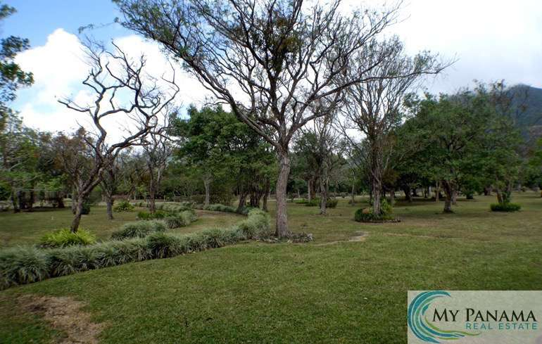El Valle Land and House for Sale: Three Lots or One BIG Lot!