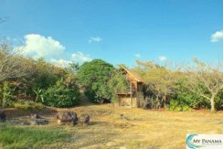 Land for Sale in Panama: Private, Cozy, and All Yours