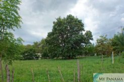 A Beautiful Piece of Land-Lot – Are you ready to build your dream home in Panama?